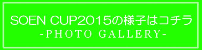 sc2016top-2-button05